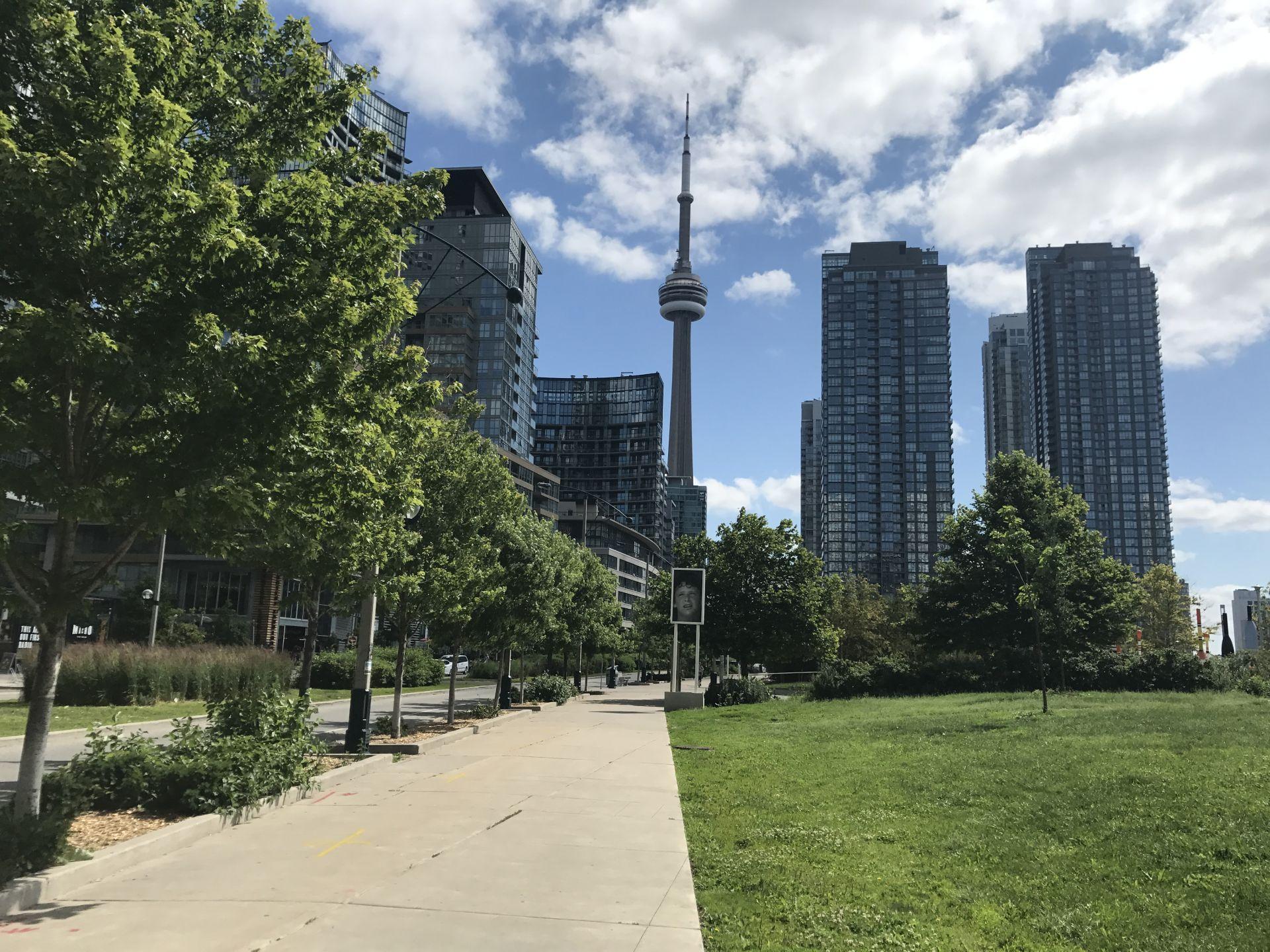 park v centru toronto s vyhledem na cn tower