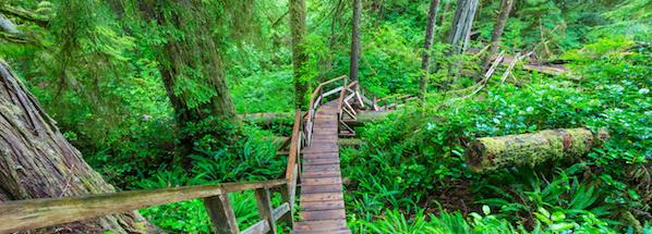 Národní park Pacific Rim