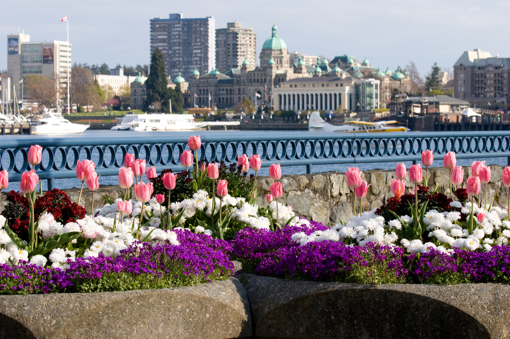 Victoria v Kanadě